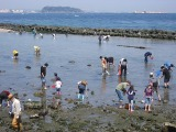 hashirimizu-beach-1308032_640